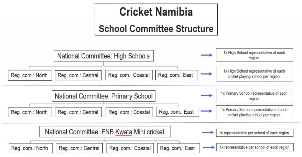 Cricket Namibia School Committee Structure